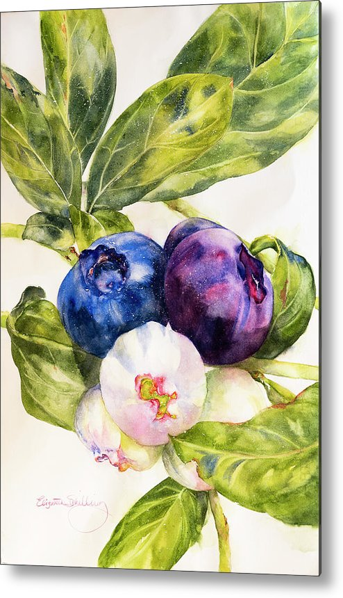 Colors Of The Berries - Metal Print