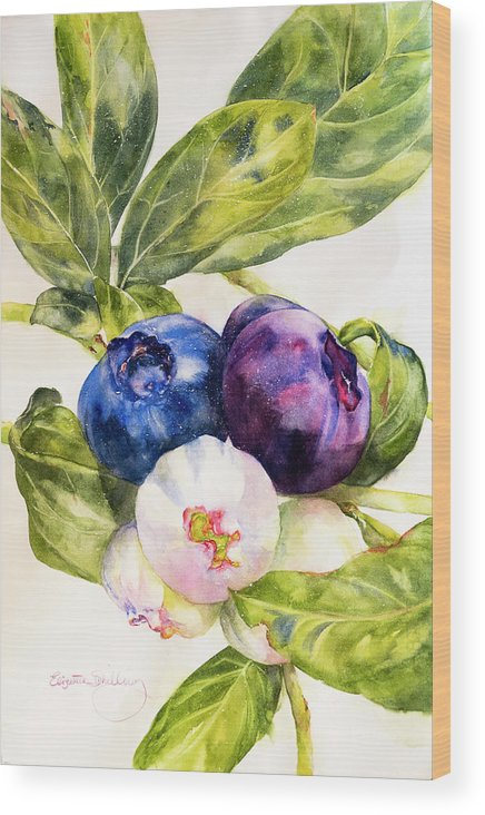 Colors Of The Berries - Wood Print