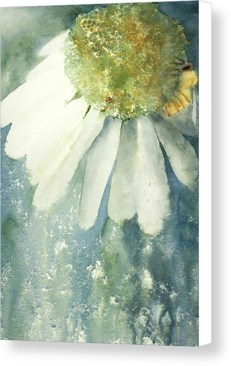 Coneflower And Bee - Canvas Print