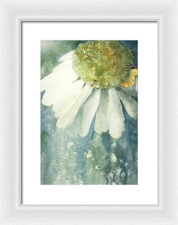 Coneflower And Bee - Framed Print