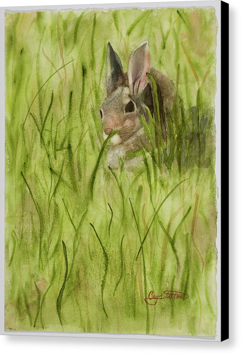 Early Morning Visitor - Canvas Print