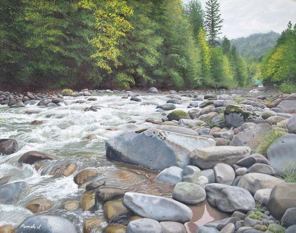 Fall On The Sandy River - Art Print