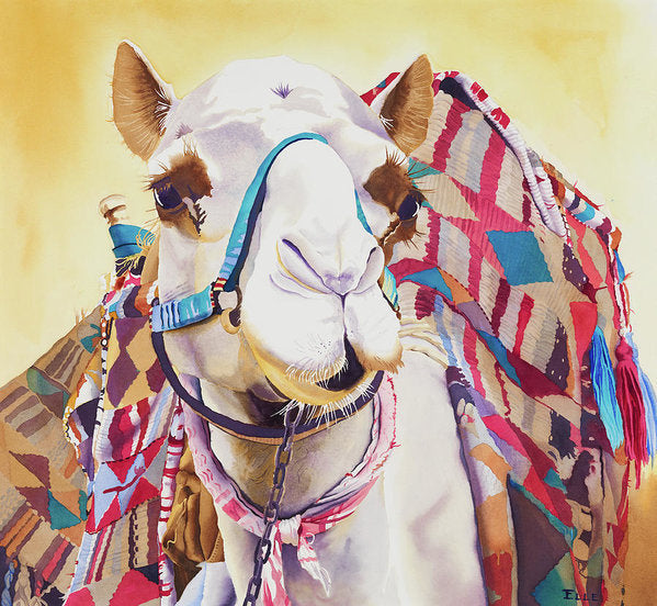 God Laughed When He Made A Camel - Art Print