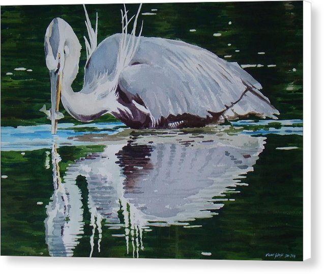 Great Blue - Canvas Print
