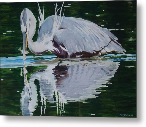 Great Blue - Metal Print