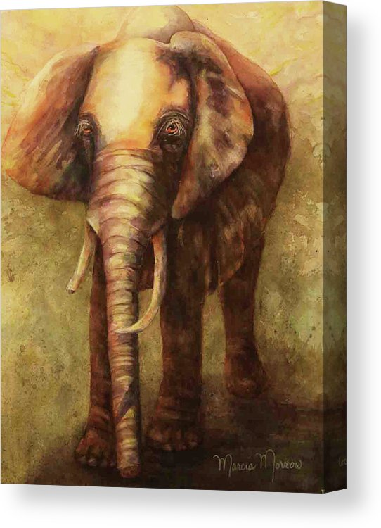 Kenyan Queen - Canvas Print