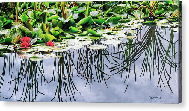 Lilly Pond - Acrylic Print