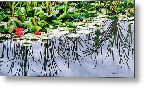 Lilly Pond - Metal Print