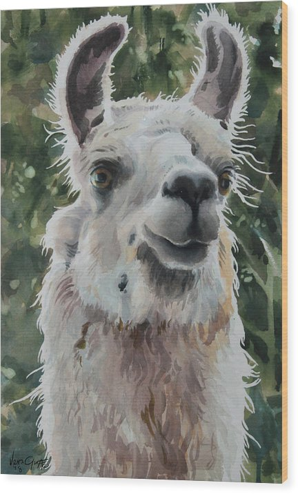 Llama Ready For Close-up - Wood Print