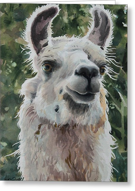 Llama Ready For Close-up - Greeting Card