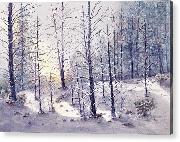 Morning Snow - Acrylic Print