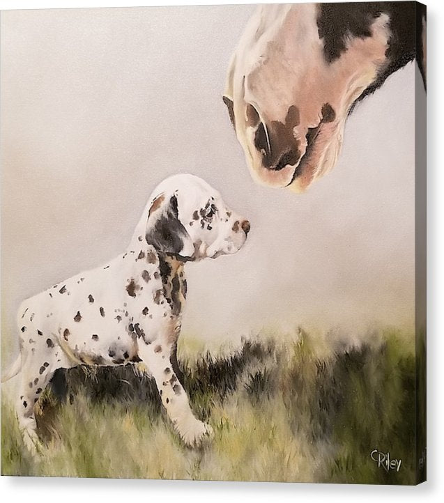New Friends - Canvas Print