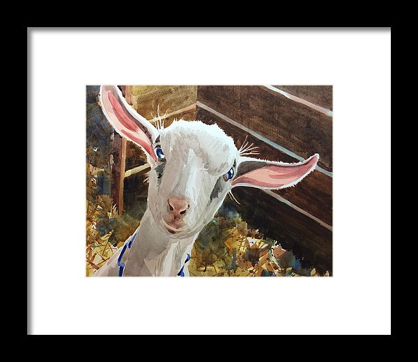 Oh You Kid - Framed Print
