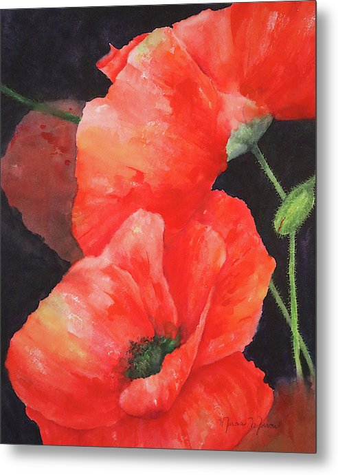 Poppies - Metal Print