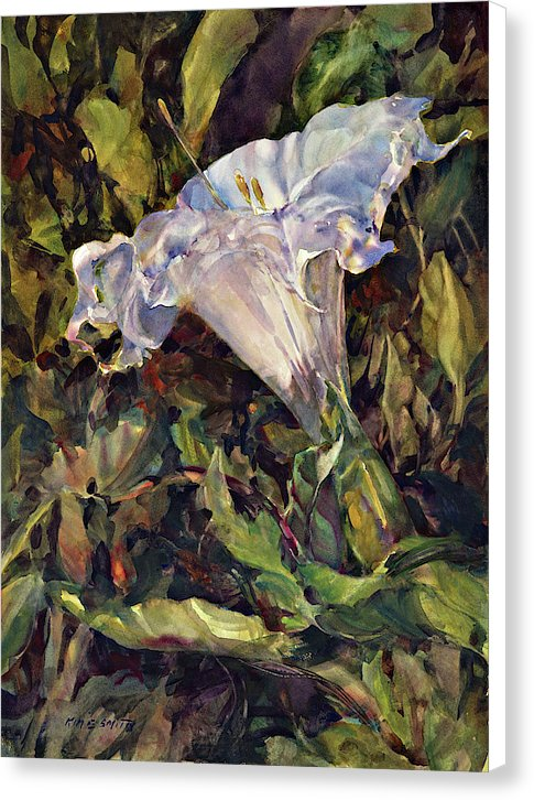 Sacred Datura - Canvas Print