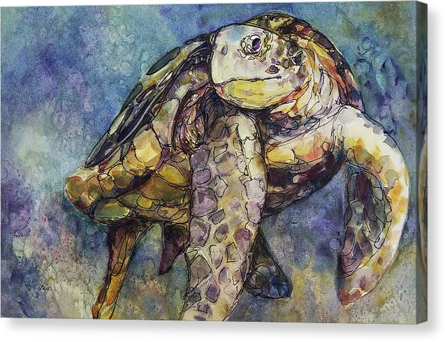 Sea Turtle - Canvas Print