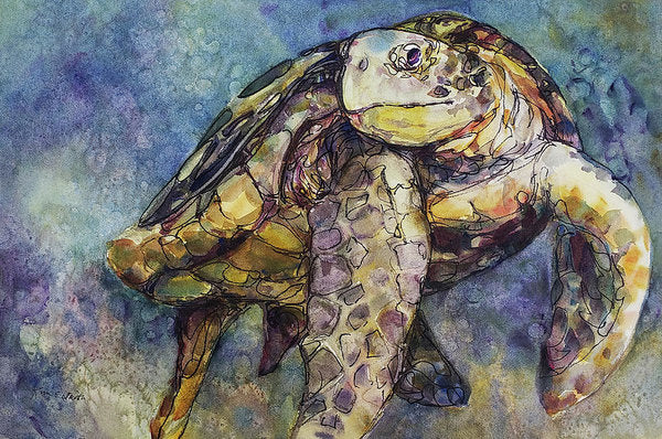 Sea Turtle - Art Print