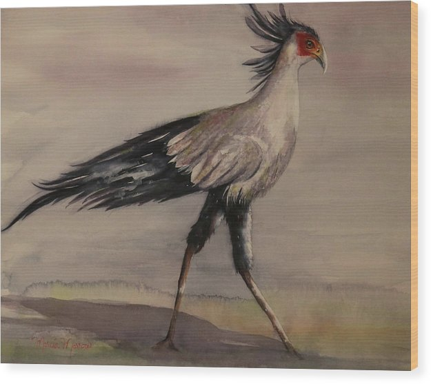 Secretary Bird - Wood Print