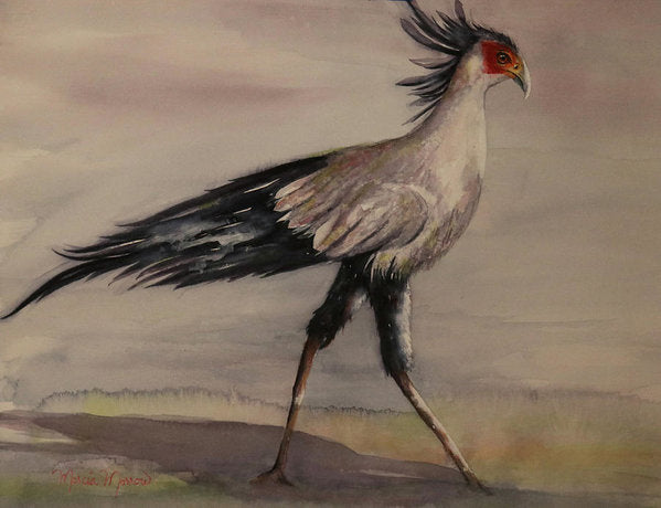 Secretary Bird - Art Print