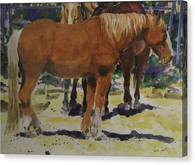 The Draft Horse - Canvas Print