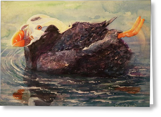 Tufted Puffin - Greeting Card