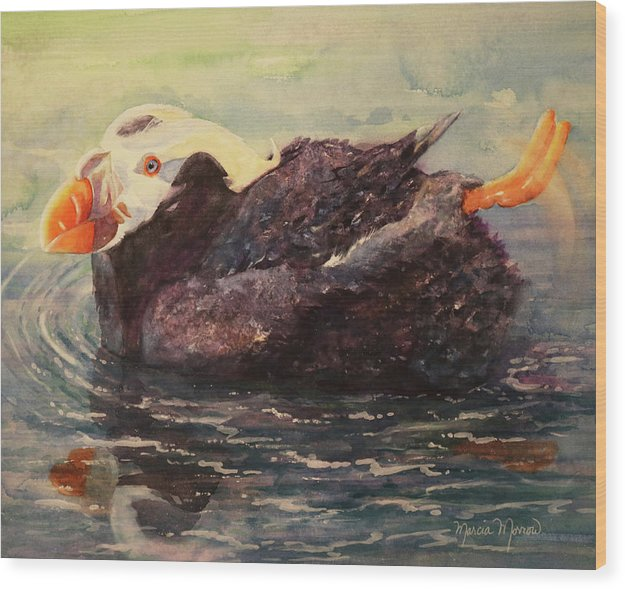 Tufted Puffin - Wood Print