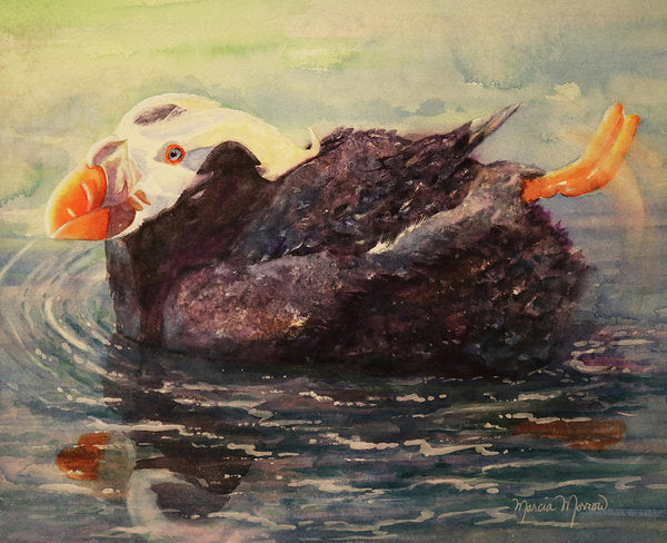 Tufted Puffin - Art Print