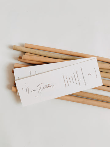 Reusable Bamboo Straws | Earthness