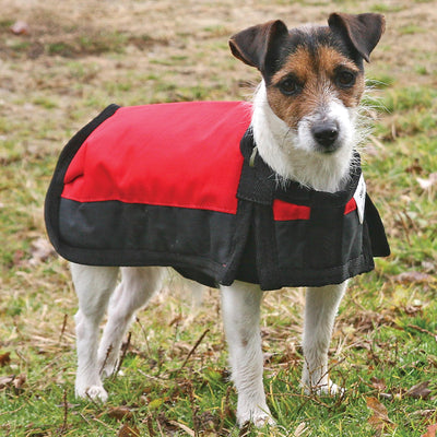 Dura-Tech® Insulated Waterproof Dog Coat