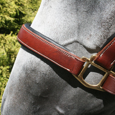 Billy Royal® Saratoga Padded Leather Halter