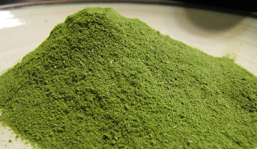 We are Loving the healthy benefits of Moringa! Around the World.
