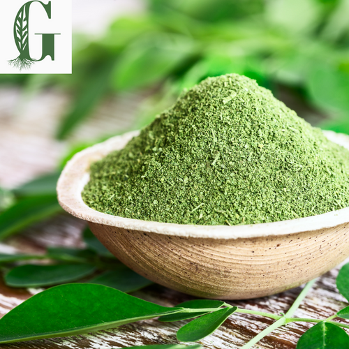 Moringa Powder 10 oz