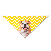 The Dogsy Zigzag Bandana
