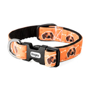Your Dog Collar