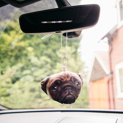 Dogsy Car Accessory