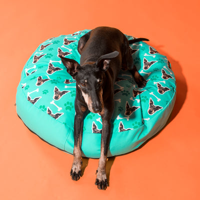 Your Dog Beanbag