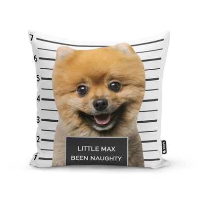 Dogsy Jail Cushion