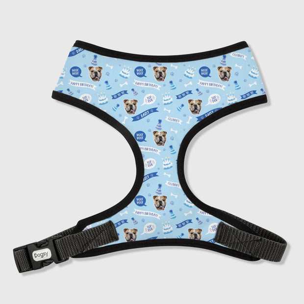 Happy Birthday Dog Harness