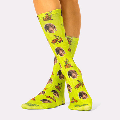 Scooby & Shaggy Socks