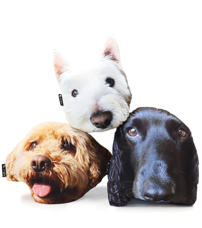 Dogsy Face Cushion