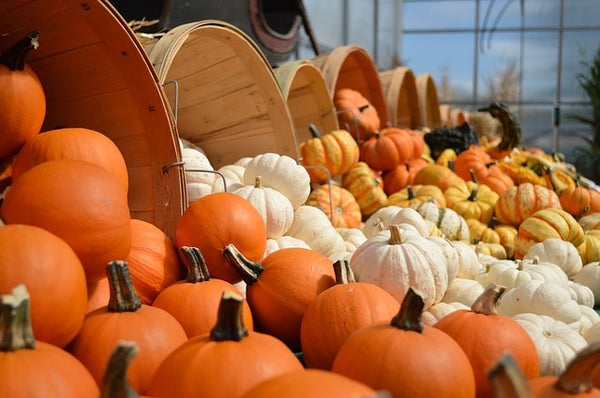 Pumpkin Baskets