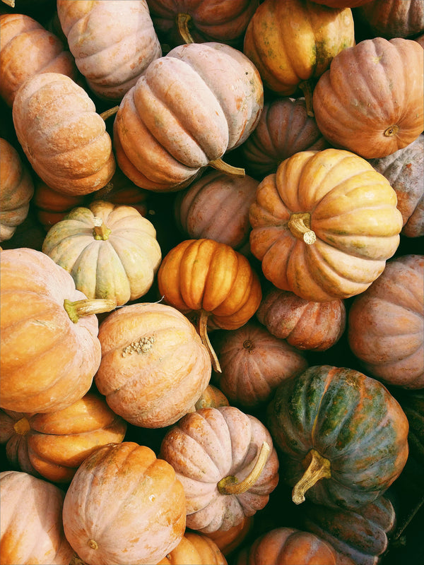 Box of Pumpkins - Thanksgiving!
