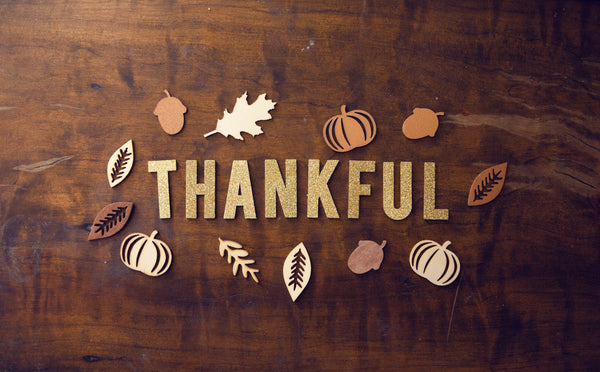Thankful Sign - Thanksgiving!