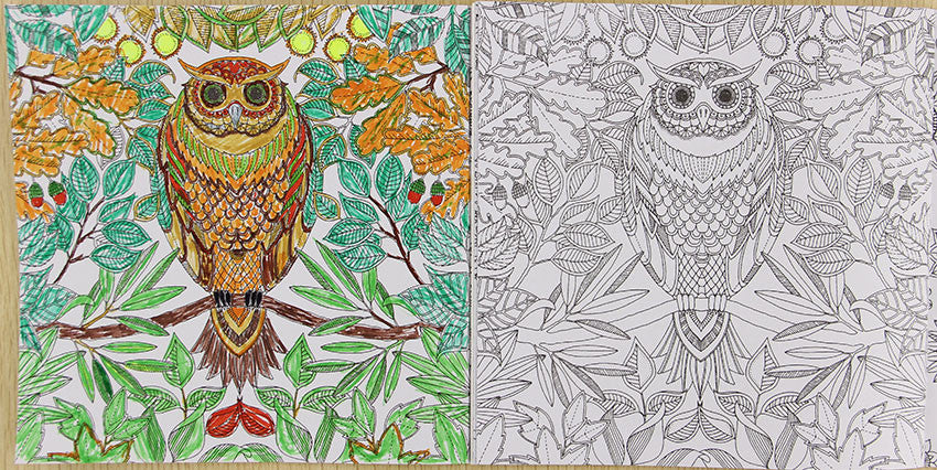 DIY ADULT COLORING BOOK SECRET GARDEN