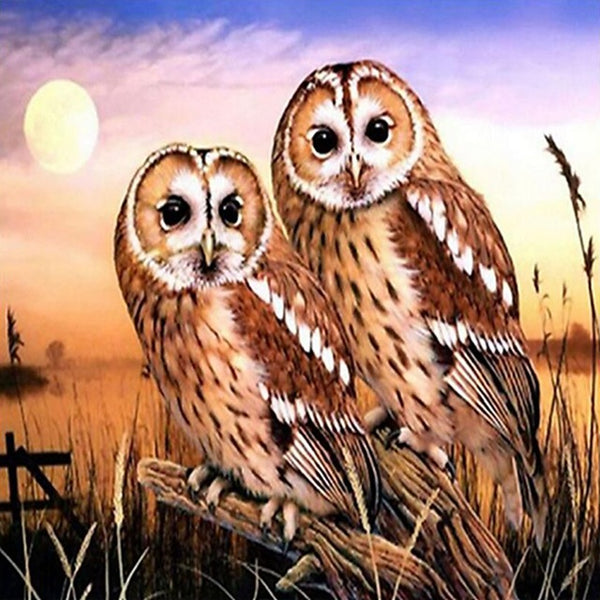 DIY-DIAMOND PAINTING/PAINT WITH DIAMONDS-OWLS