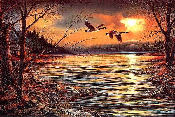 DIY-DIAMOND PAINTING/PAINT WITH DIAMONDS-GEESE FLY SOUTH