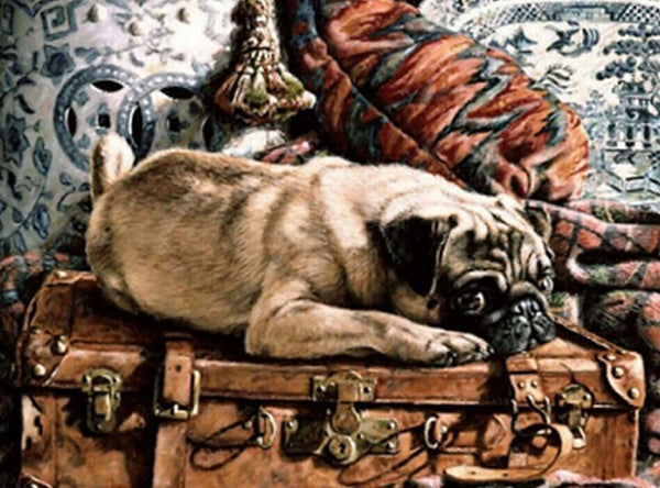 DIY-DIAMOND PAINTING/PAINT WITH DIAMONDS-PUG
