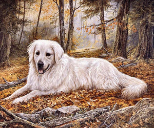 DIY-DIAMOND PAINTING/PAINT WITH DIAMONDS-WOODS DOG