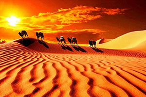DIY-DIAMOND PAINTING/PAINT WITH DIAMONDS-DESERT CAMELS