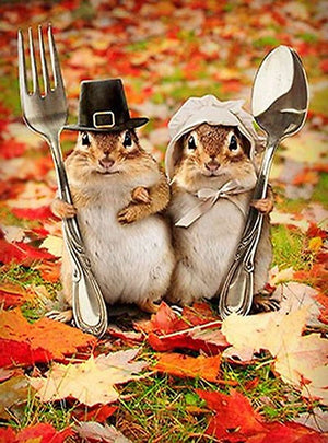 DIY-DIAMOND PAINTING/PAINT WITH DIAMONDS-SQUIRREL THANKSGIVING